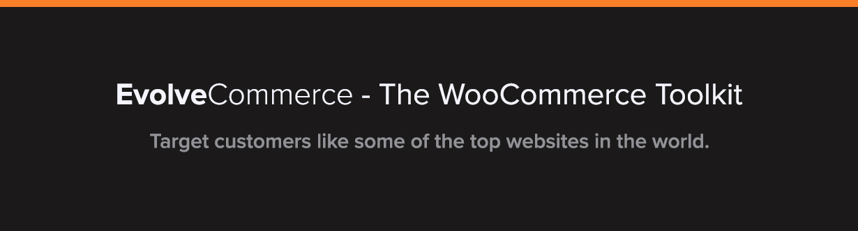 Evolve Commerce - WooCommerce Filters & Toolkit - 2